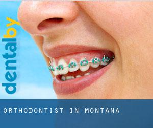 Orthodontist in Montana