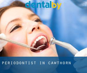 Periodontist in Cawthorn